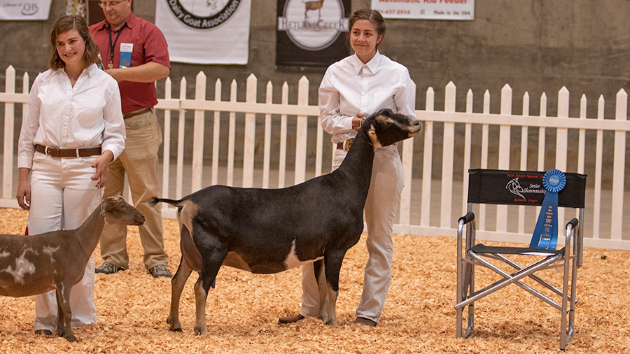2019 Youth Show Results