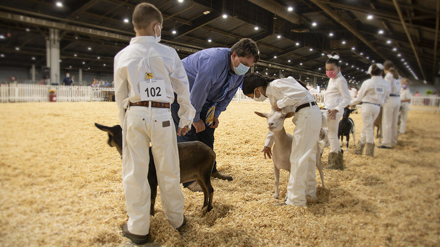 Youth Show Results